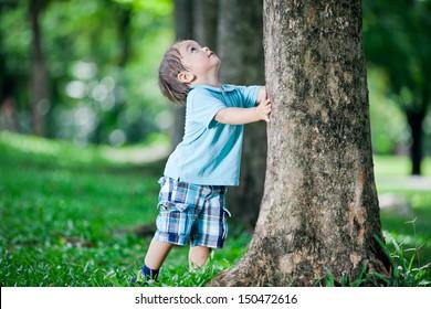 Boy playing at tree