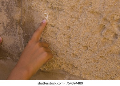 boy pointing the ancient wall of limestone