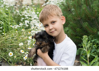 Boy and puppy sit on the grass among flowers