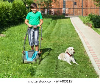 Boy pushing a lawnmower through the partially mowed yard lawn - accompanied by his lazy labrador  dog