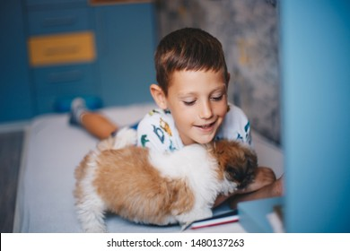 Boy is reading a book in his room with a small dog