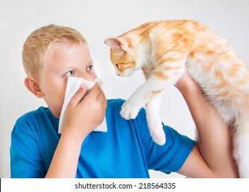 A boy with a red cat, allergy
