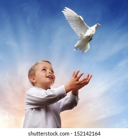 Boy releasing a white dove into the air concept for freedom, peace and spirituality