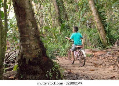 A boy ridding his bike in the jungle enjoying