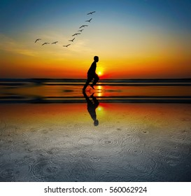 Boy running at the beach during sunrise on reflection and birds