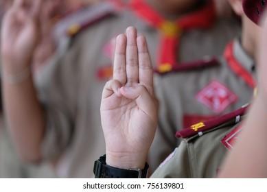 Boy scout symbol