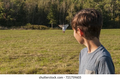Boy sees a vision of his mother (dead, or lost) as ghost or angel in far distance.