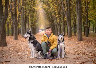 A boy sits between two husky dogs in the forest