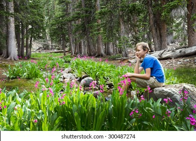 The boy sits on a rock by the stream. Great Basin National Park, Nevada