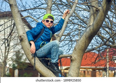A boy sits on a tree on a spring day . Everyday life of teenagers .