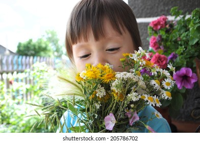 Boy smelling summer bouquet of wildflowers outdoor, flowers in bouquet prepared fog gifting mother, happy cute child