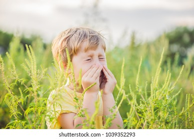 Boy sneezes because of an allergy to ragweed