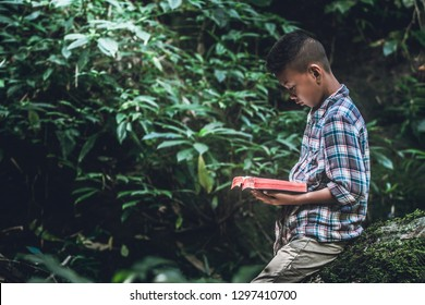Boy standing in forest and reading book or bible on green mos  at nature. Children and religion.