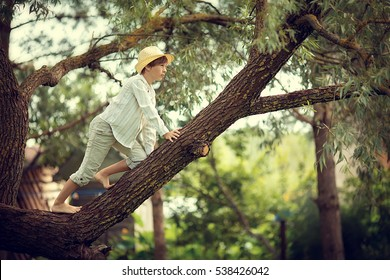The boy in the straw hat resting on a large tree.