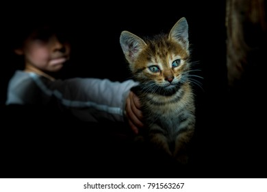 a boy stroking a kitten in the dark