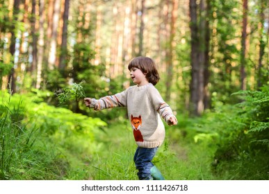 A boy in a sweater with a Fox walking in the woods. With a branch of blueberries in hand