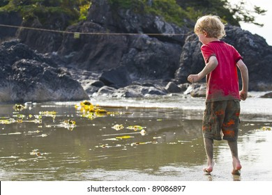 Boy And The Tidal Pool