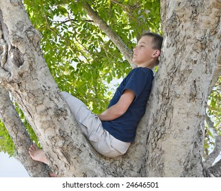 boy in a tree looking thoughtful or bored