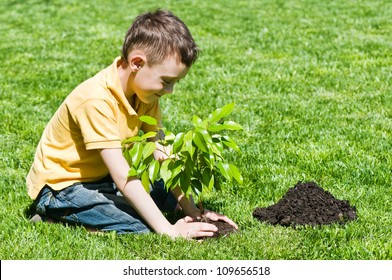 boy with tree on lawn