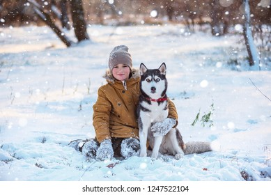 a boy in a warm jacket, hat and gloves walks with a husky in a winter park