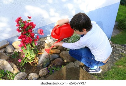 Boy watering plants with watering can in the garden.