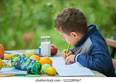 Boy work homework in nature