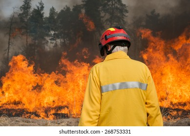 BOYARKA, UKRAINE - 27 MAR 2015: Firefighter on agriculture land after fire. It was demonstration training of forest fire fighters on suppression of surface fire on forest research station in Ukraine.