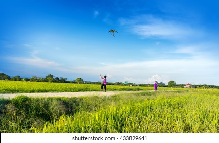 boys flying a kite in a paddy field
