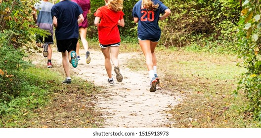 Boys and girls running on a path in the woods training for coross country racing.
