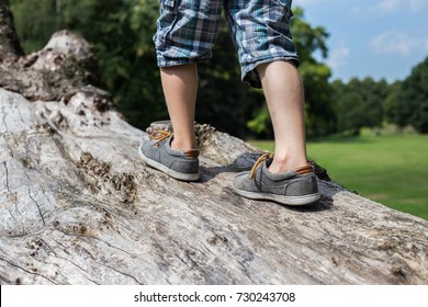 Boys legs, kid is walking on a fallen tree stunk