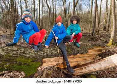 Boys playing on tree trunk in woods