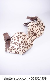 bra of the leopard coloring isolated on white