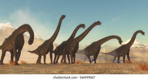 Brachiosaurus Dinosaur Herd 3D illustration - A Brachiosaurus dinosaur herd pass through a dry desert area in the Jurassic Period of North America.