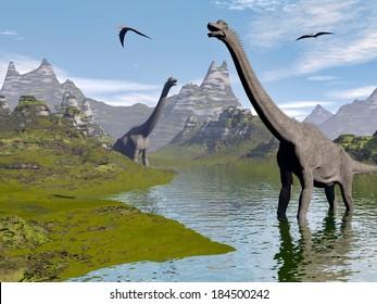 Brachiosaurus dinosaurs walking in water landscape by beautiful day