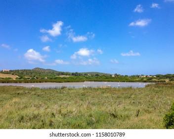 Brackish water pond with some flamingos in Sardinia, Italy.