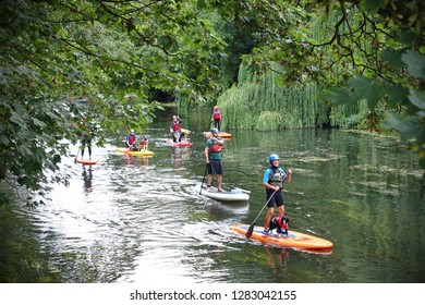Bradford on Avon, UK - August 3, 2018: People paddleboard up the River Avon while carrying dogs on their boards.