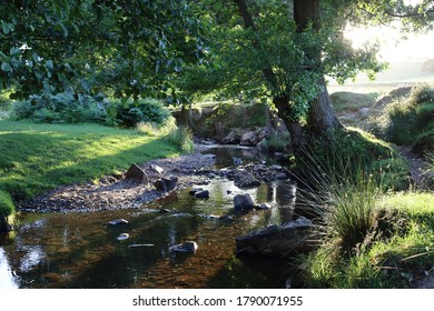 Bradgate Park late sun set