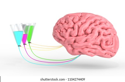 Brain control of human hormones and emotions. 3d render