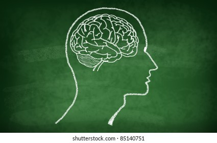 Brain drawing with chalk on green board