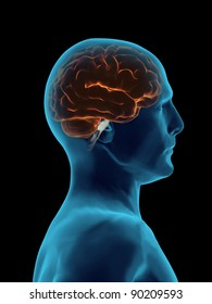 Brain Faded cover