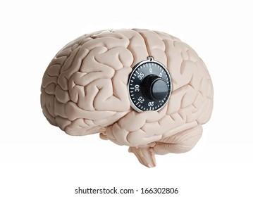 Brain lock, Human brain model with a dial lock