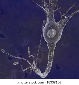 Brain Neuron Cell Neurons are electrically excitable cells in the nervous system that process and transmit information in the brain.