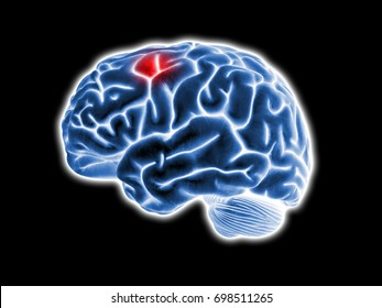 brain pain illustration