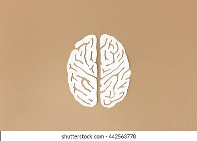 Brain paper-cut illustration