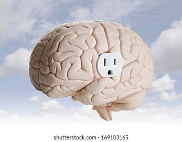 Brain power. Brain model with an electrical outlet.