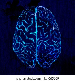 Brain sketch, top view. Black background and glowing lines.