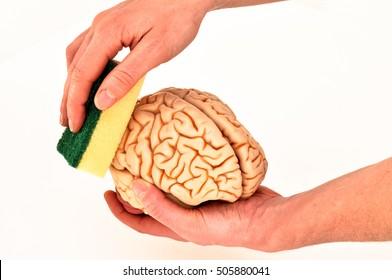 brainwashed with sponge