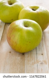 Bramley cooking apples or Malus domestica Bramleys Seedling' a popular British variety for making pies and desserts