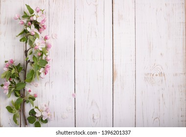 A branch of a blossoming apple tree on a white wooden background