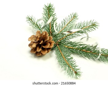 branch of Christmas tree and cone on white background